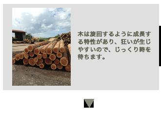 新月伐採の工程2