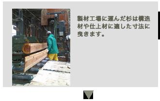 新月伐採の工程4